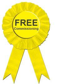 BWT Free Commissioning